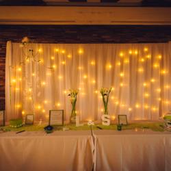 Rideau lumineux yoshi